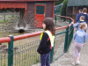Obiskali smo Sikalu zoo
