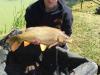 Športni ribolov
